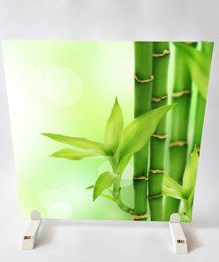 GlasWärmt-Infrarotheizung-Motiv-IMMP-900Watt-Bambus-1200x600x25mm-Vorderseite